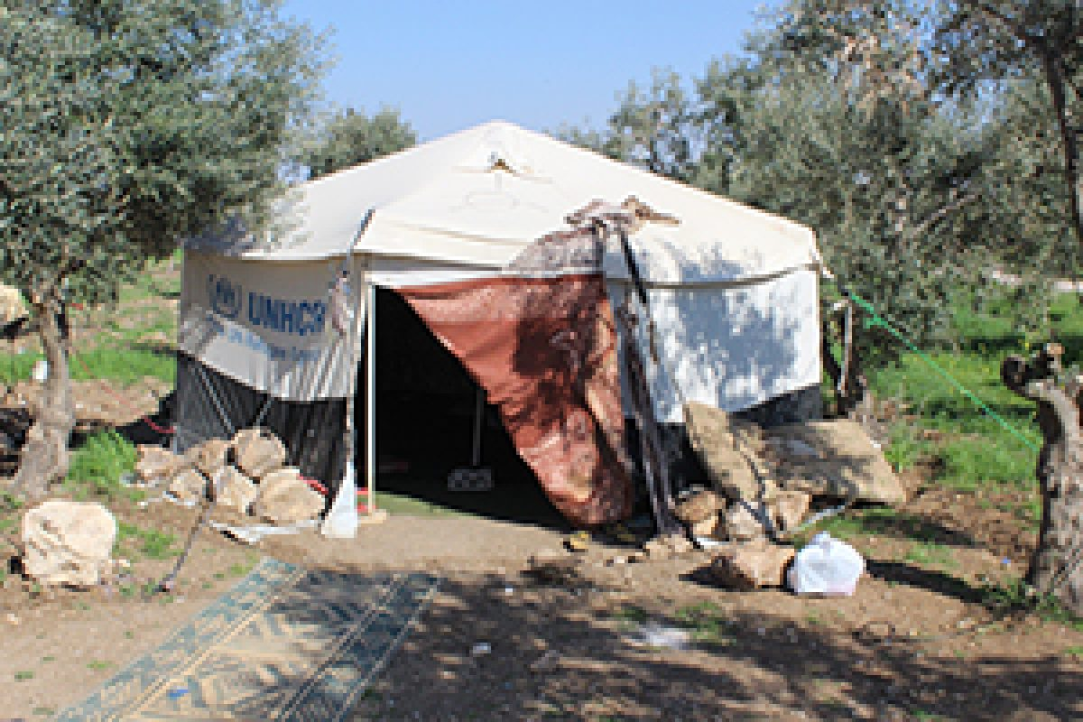 Living in a Tent: The Daily Struggles of a Syrian Refugee Family